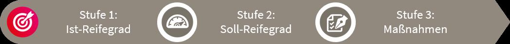 fme Reifegradmodell Stufe 1