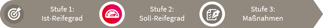 fme Reifegradmodell Stufe 2