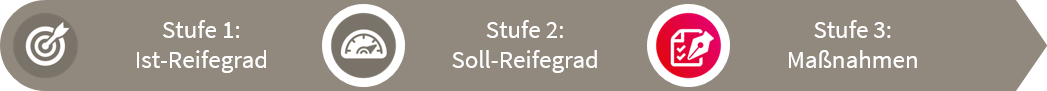 fme Reifegradmodell Stufe 3