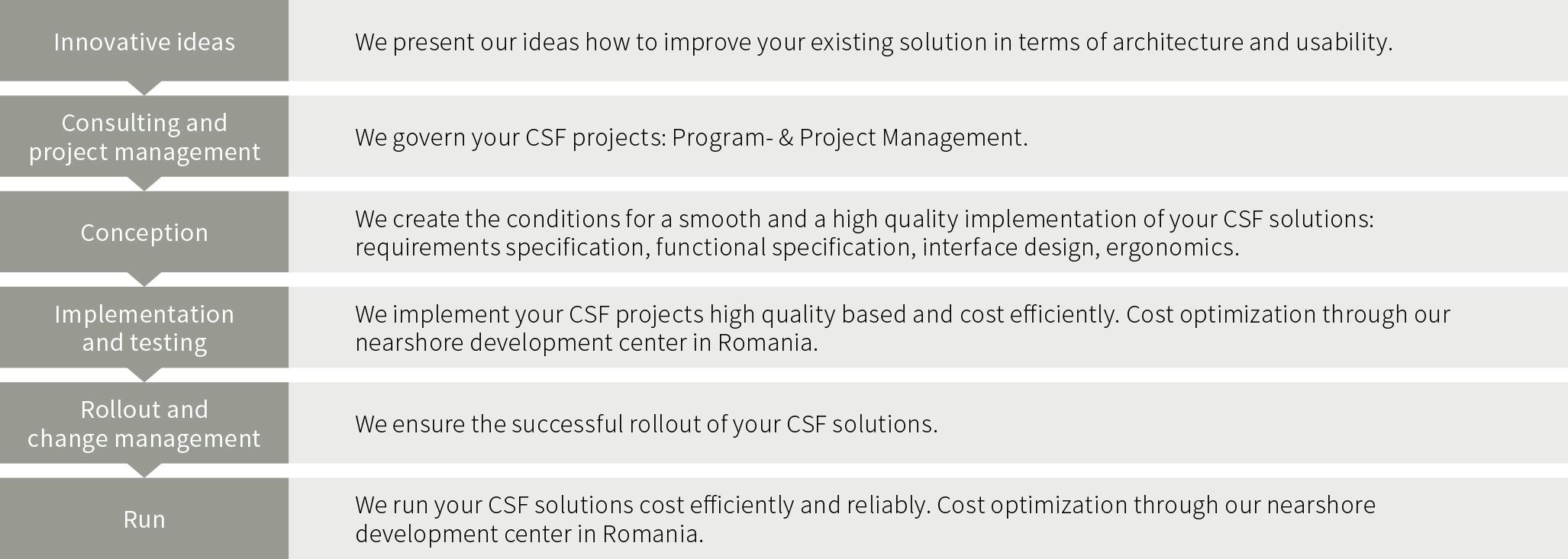 Custom Solution Framework Projektvorgehen